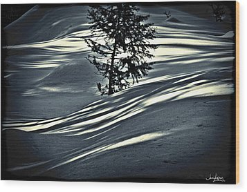 Wood Print featuring the photograph Light On The Snow by Janie Johnson