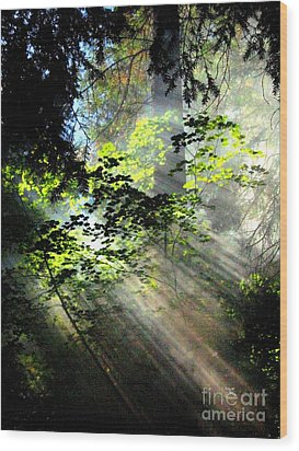 Light Rays Wood Print by Shasta Eone