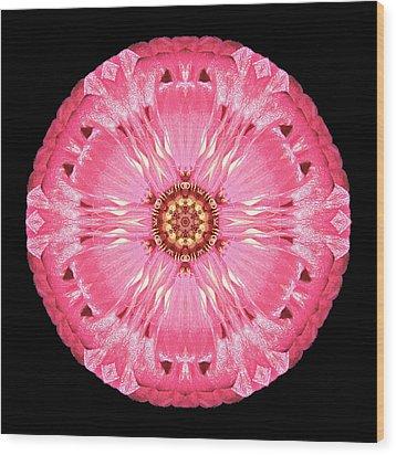 Wood Print featuring the photograph Light Red Zinnia Elegans Flower Mandala by David J Bookbinder