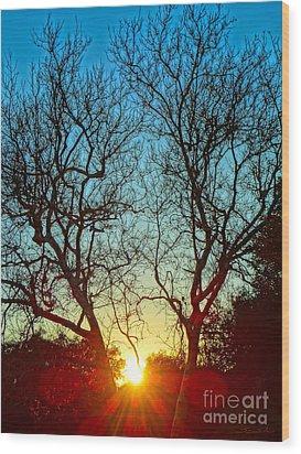 Light Sanctuary Wood Print by Gem S Visionary