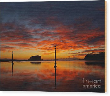 Wood Print featuring the photograph Light Show by Trena Mara