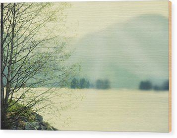 Light Streams Over A Mountain Wood Print by Roberta Murray