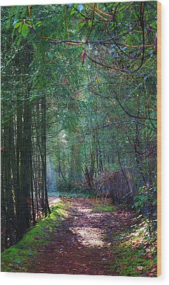 Light The Way Wood Print by Bruce Bley