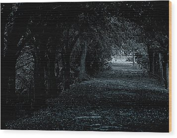 Wood Print featuring the photograph Light Tunnel by Lorenzo Cassina