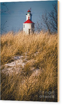 Wood Print featuring the photograph Lighthouse Amongst The Tall Grass by Mark David Zahn