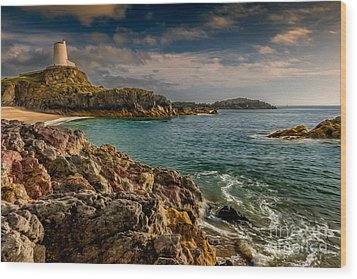 Lighthouse Bay Wood Print by Adrian Evans