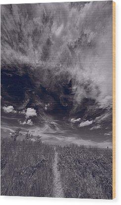 Lighthouse Beach Dunes Bw Wood Print by Steve Gadomski