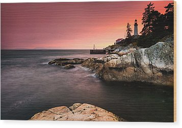 Lighthouse Park Wood Print by Alexis Birkill
