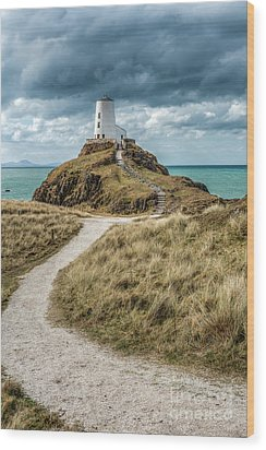 Lighthouse Path Wood Print by Adrian Evans