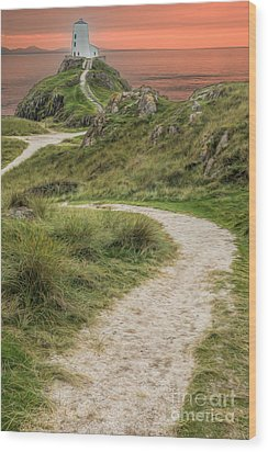 Lighthouse Trail Wood Print by Adrian Evans