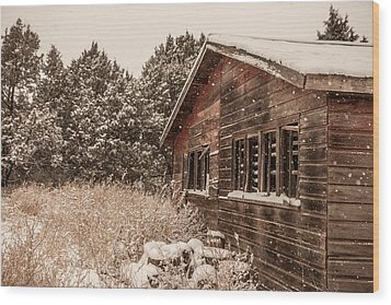 Wood Print featuring the photograph Snowing Softly by Shirley Heier