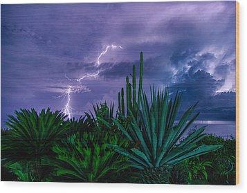 Lightning During Storm Wood Print by Dmitry Sergeev