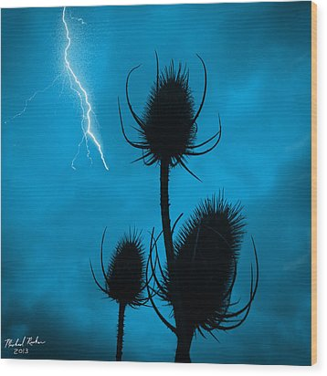 Lightning Spikes Wood Print by Michael Rucker