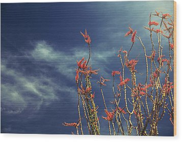 Like Flying Amongst The Clouds Wood Print by Laurie Search