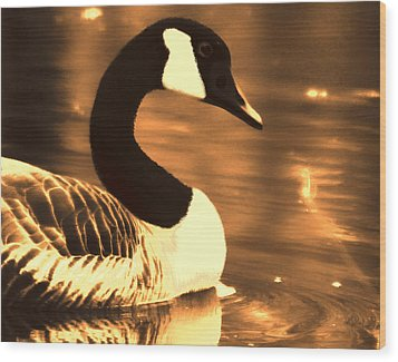Lila Goose The Pond Queen Sepia Wood Print by Lesa Fine