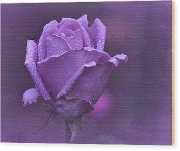 Lila Rose Wood Print