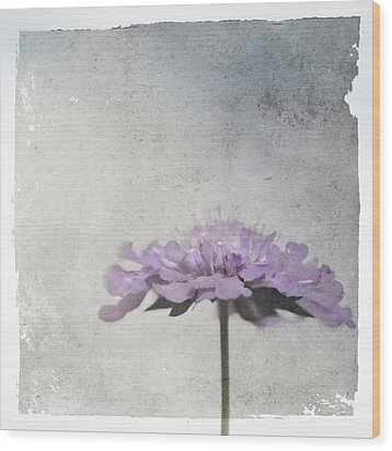 Wood Print featuring the photograph Lilac by Annie Snel