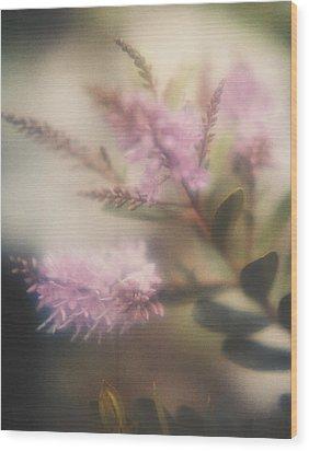 Lilac Wood Print by Erik Poppke