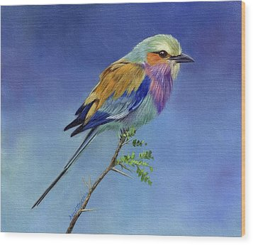 Lilacbreasted Roller Wood Print by David Stribbling
