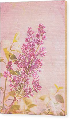 Lilacs In Pink Wood Print by Kay Pickens
