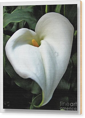 Wood Print featuring the photograph Lilian Heart by Chris Anderson