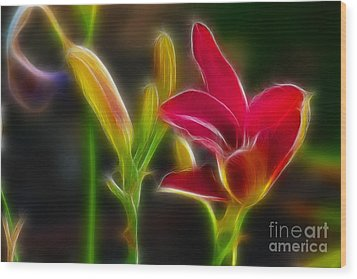 Lilies-6340-fractal Wood Print by Gary Gingrich Galleries