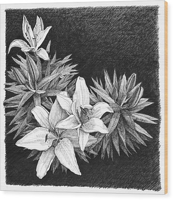 Lilies In Pen And Ink Wood Print by Janet King