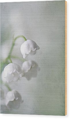 Lilies Of The Valley Wood Print by Annie Snel