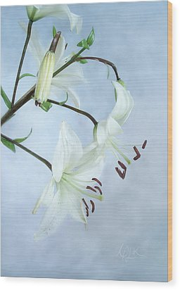 Wood Print featuring the photograph Lilies On Blue by Louise Kumpf