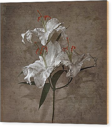 Wood Print featuring the photograph Lilium Euratum #01 by Richard Wiggins