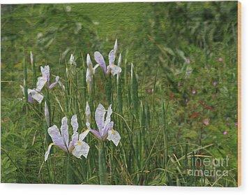 Lillies Of The Field Wood Print by Jennifer Apffel