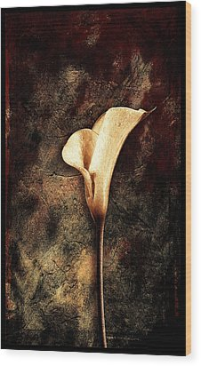 Lilly 2 Wood Print by Mauro Celotti