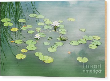 Wood Print featuring the photograph Lilly Pads by Erika Weber