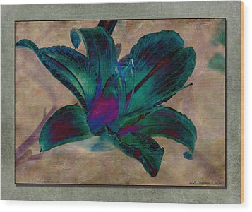 Lily 9 Wood Print by WB Johnston