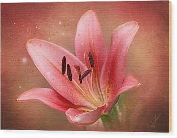 Wood Print featuring the photograph Lily by Ann Lauwers