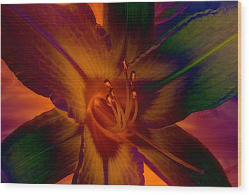 Wood Print featuring the photograph Lily Colors by WB Johnston