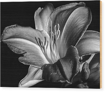 Lily In Black In White Wood Print by Camille Lopez