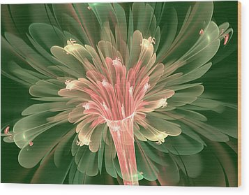 Lily In Bloom Wood Print by Svetlana Nikolova