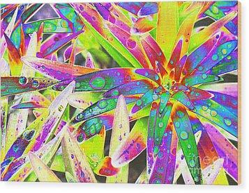 Lily Leaves Raindrops Wood Print by Carol Lynch