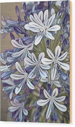 Lily Of The Nile Wood Print by Ben and Raisa Gertsberg