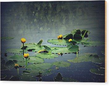 Lily Pads In The Rain At Vernonia Lake Wood Print by Dawna Morton