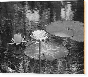 Lily Pond 2 Wood Print by Anita Lewis