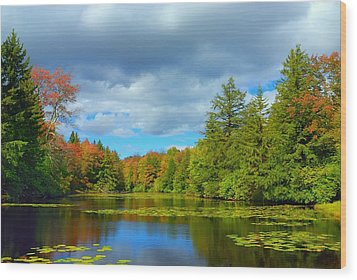 Lily Pond Wood Print