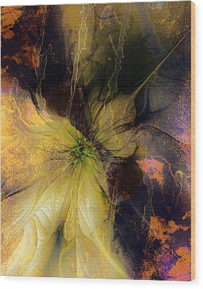 Lily Pond Reflections Wood Print by Amanda Moore
