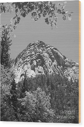 Lily Rock In Black And White Wood Print by Glenn McCarthy Art and Photography