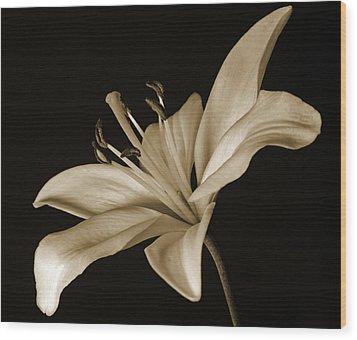 Lily Wood Print by Sandy Keeton