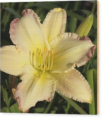 Lily Square Wood Print