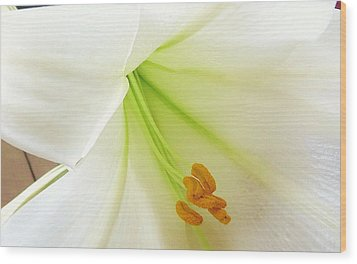 Lily Stamen Wood Print by Fortunate Findings Shirley Dickerson