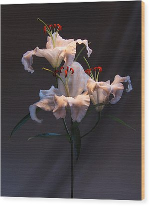 Wood Print featuring the photograph Lily Variation #01 by Richard Wiggins