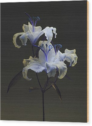 Wood Print featuring the photograph Lily Variation #03 by Richard Wiggins